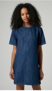 topshop denim shift dress